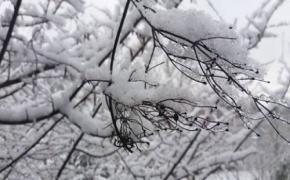 12/01/2017 Φωτογραφική λευκή διαδρομή